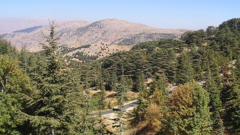 mini-guide-to-barouk-what-to-do-lebanon-traveler