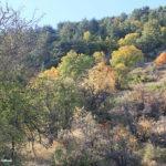 Ehden, Mount Makmel