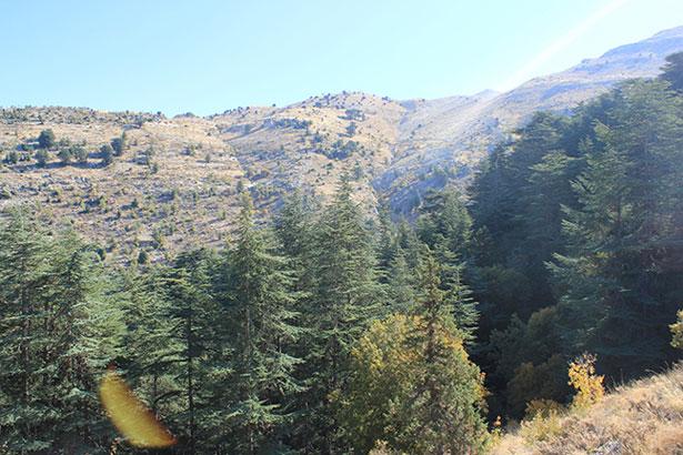 Ehden-lebanon-traveler