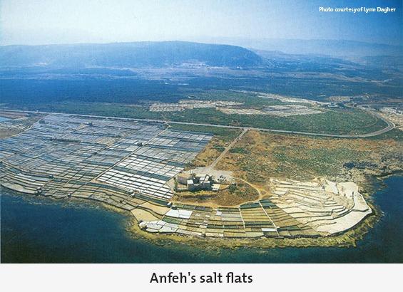 Anfeh's salt flats