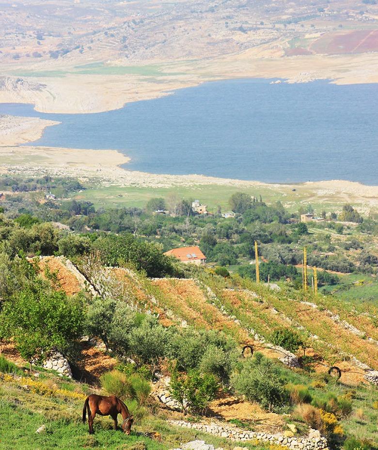 lake-qaraoun-lebanon-traveler