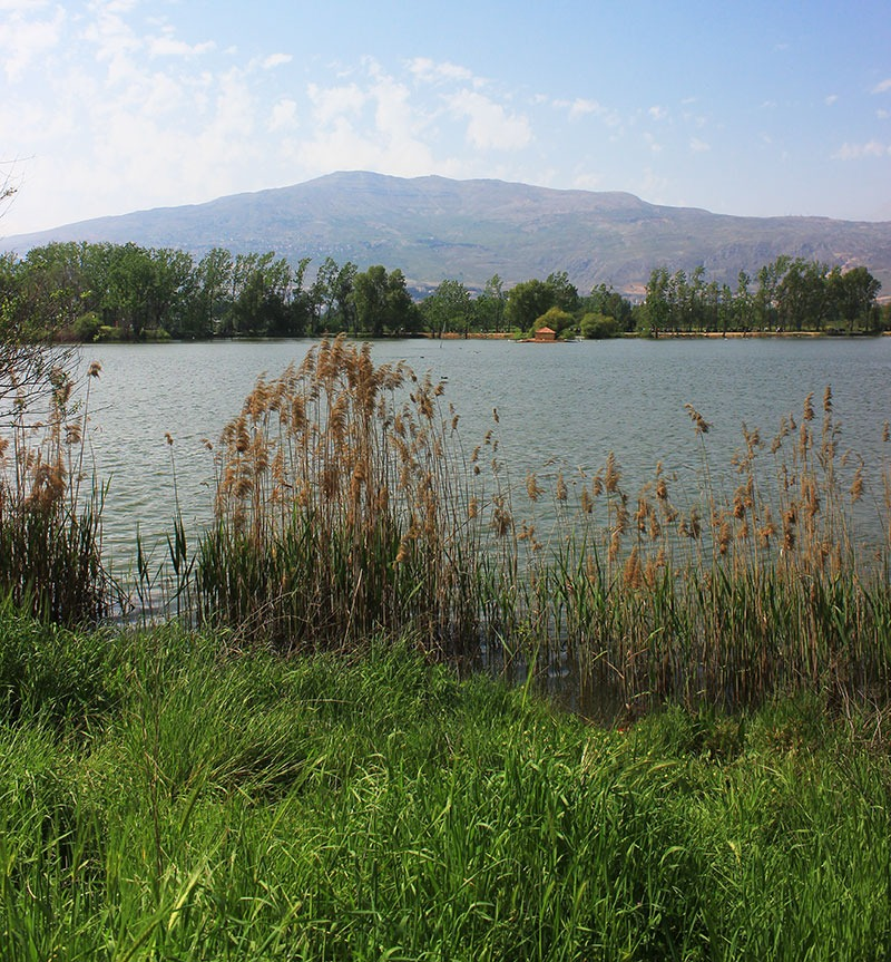 taanayel-lebanon-traveler