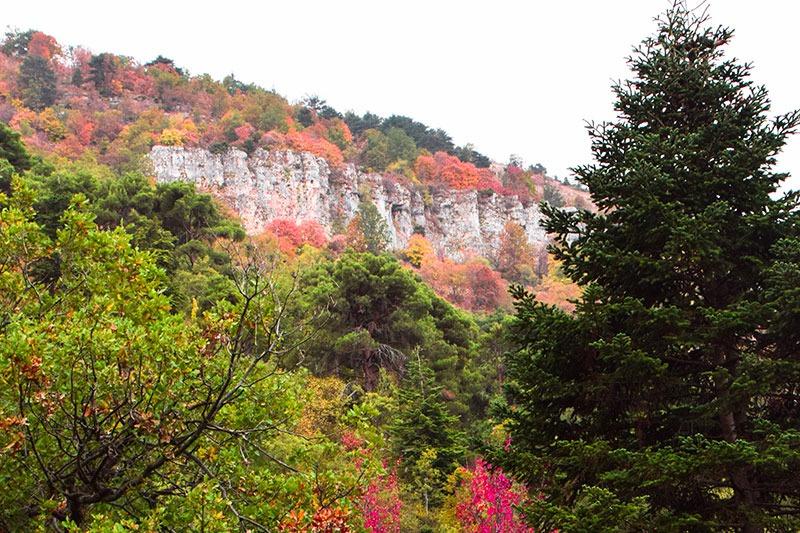 Ehden-Nature-lebanon-traveler