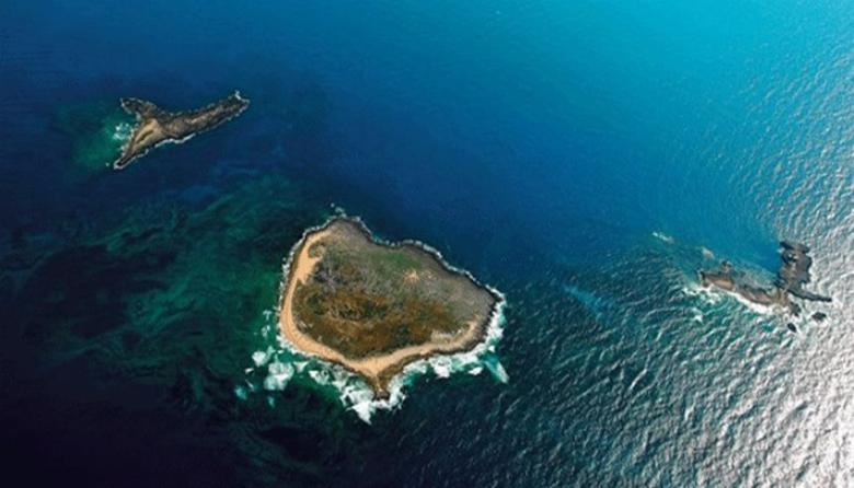 mini-guide-to-tripoli-palm-island-lebanon-traveler