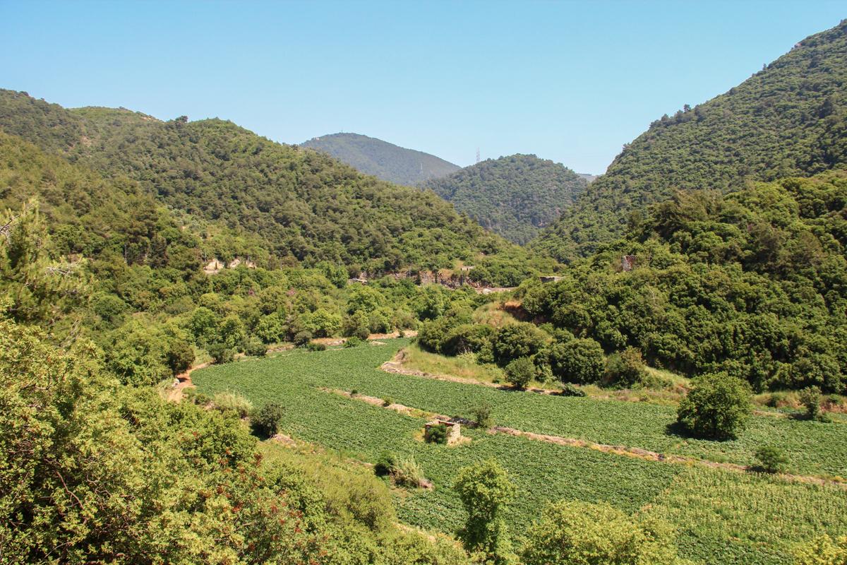 damour-mount-lebanon-lebanon-traveler