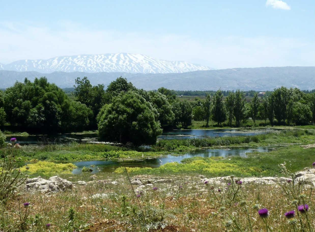 lebanon-traveler-nature-reserves