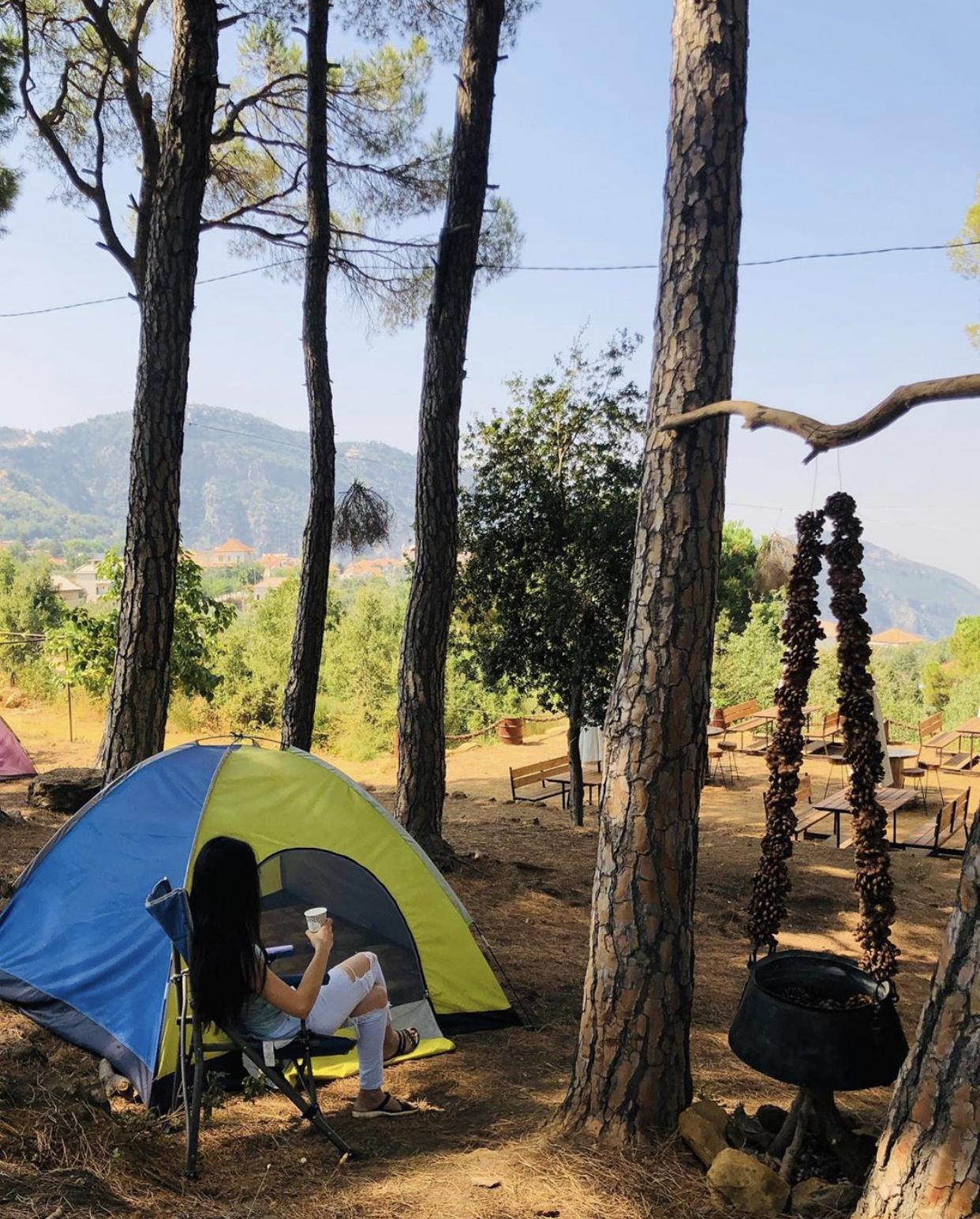 Douma-Pine-Straw-Lebanon-Traveler