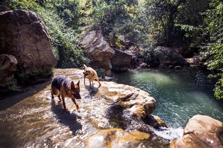 Rechmaya-aley-mini-guide-lebanon-traveler-7
