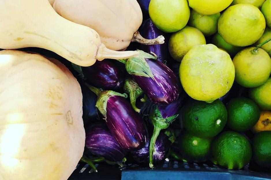 Rechmaya-aley-mini-guide-lebanon-traveler-terroir-farming-vegetables