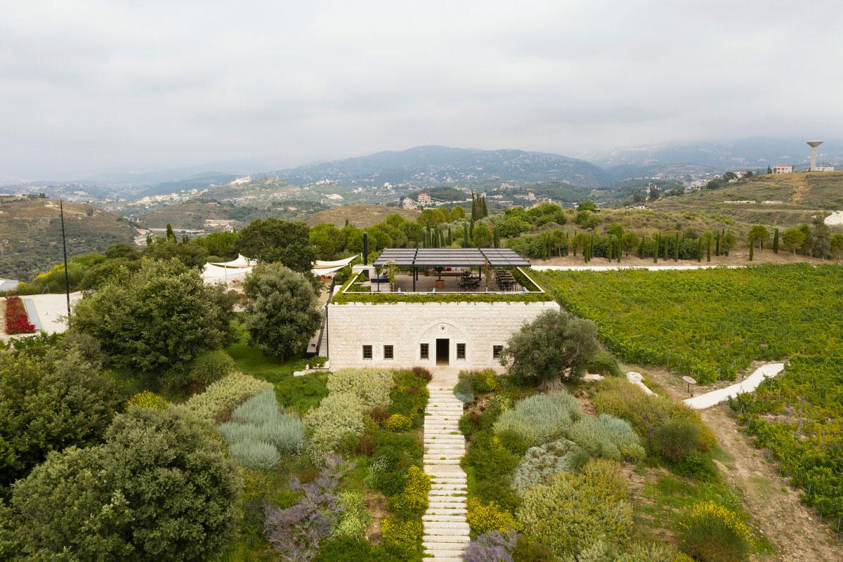 ixsir-winery-lebanon-traveler-grapes-vineyards-wine-5